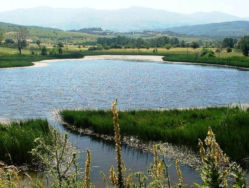 Image result for liqeni i breznes