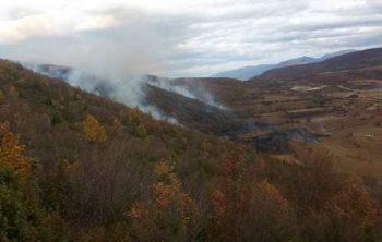 Zjarri përfshin zonën e liqenit në Brezne!